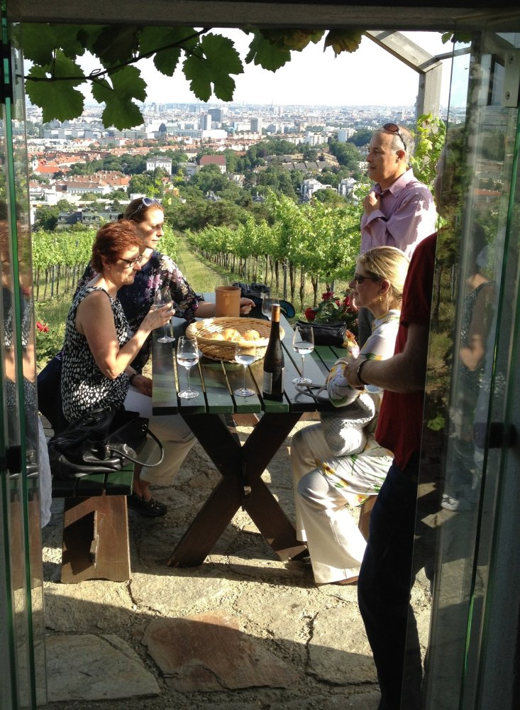 In the Vineyards Overlooking Vienna