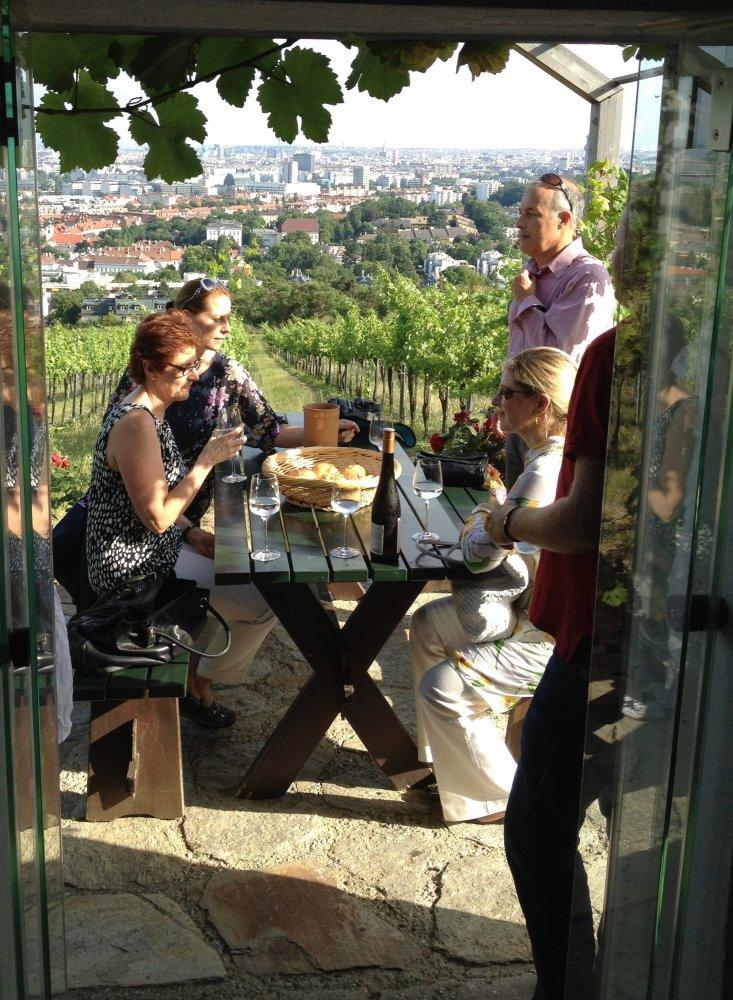 In the Vineyards Overlooking Vienna