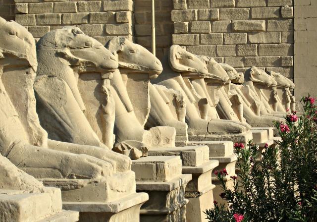 egypt (1)