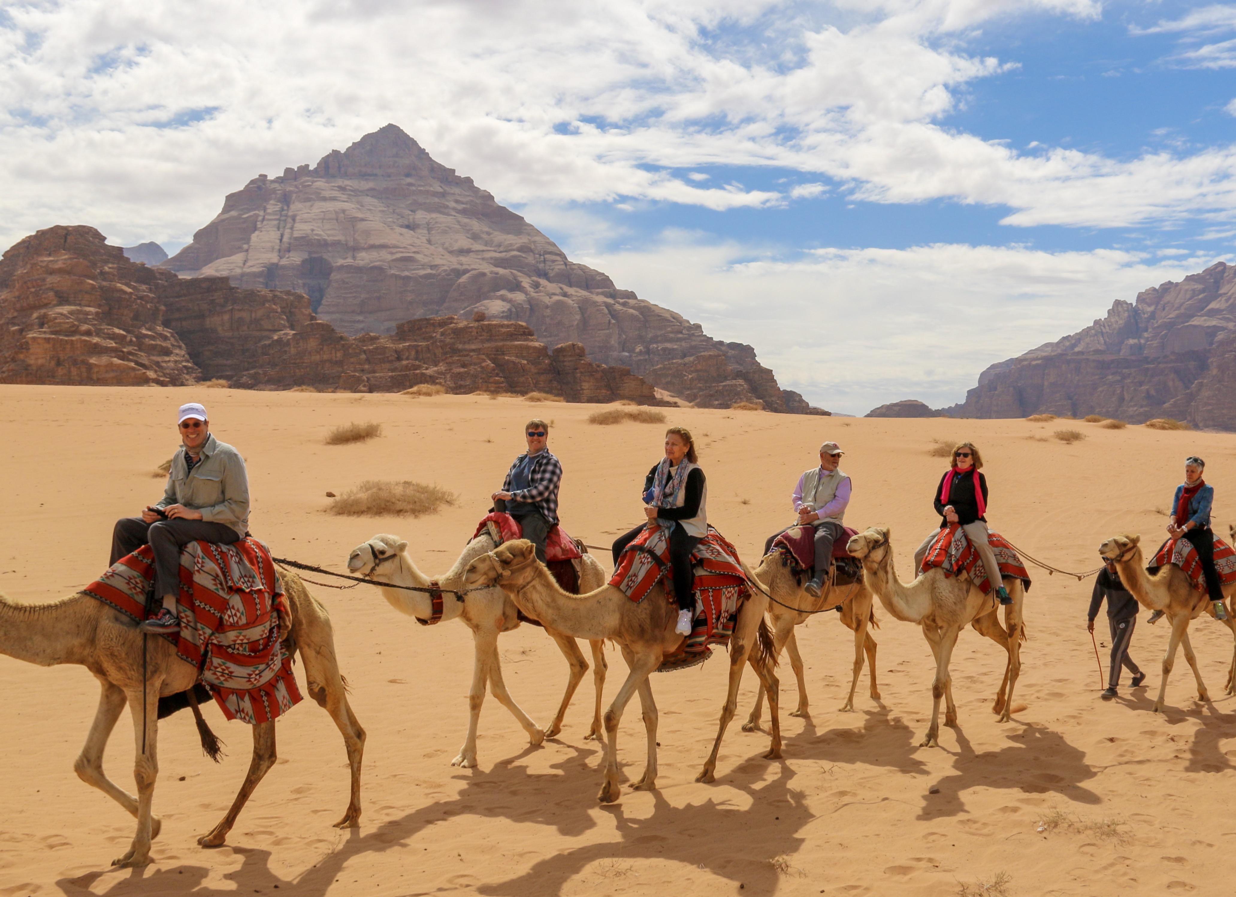 camels_in_jordan 2